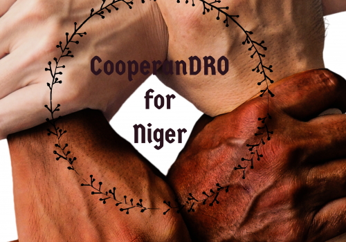 CooperanDro for Niger